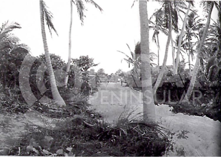 historia del bulevar kukulkan de cancun