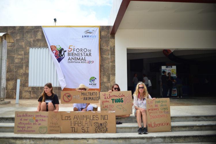 Foro Bienestar Animal en Cancún