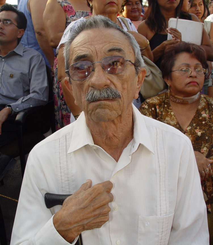 Ingeniero Manuel Jesús Castillo González.