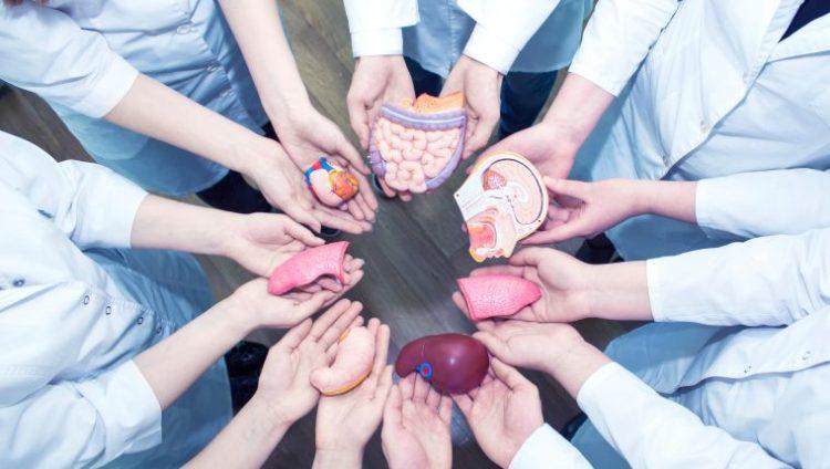 Día de la Donación de Órganos