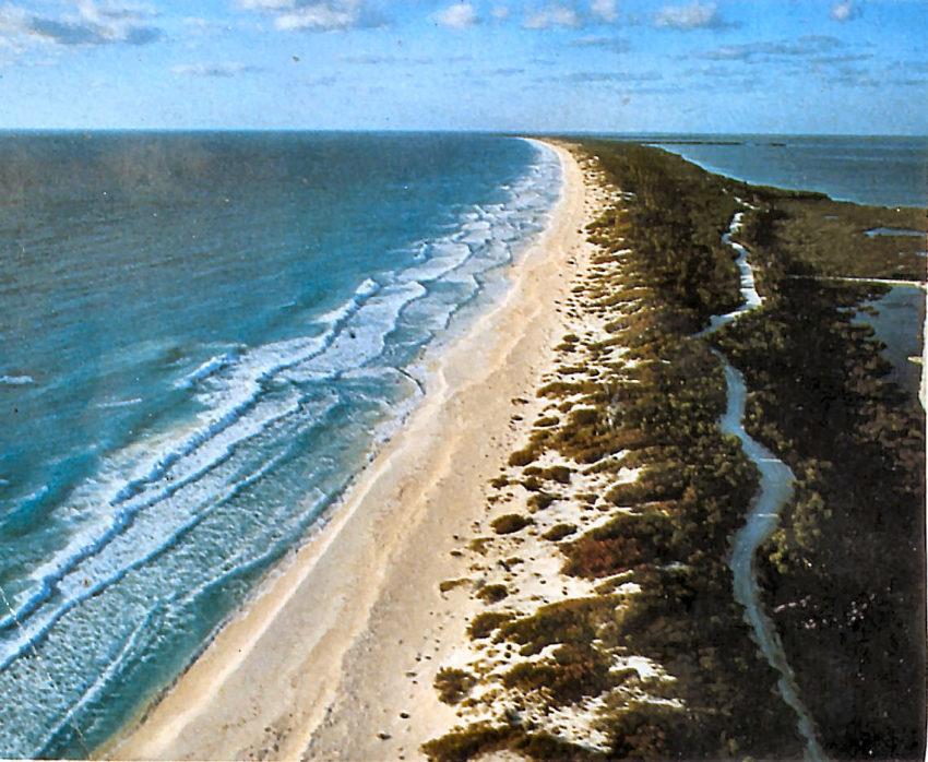 Isla Cancún en estado virginal.